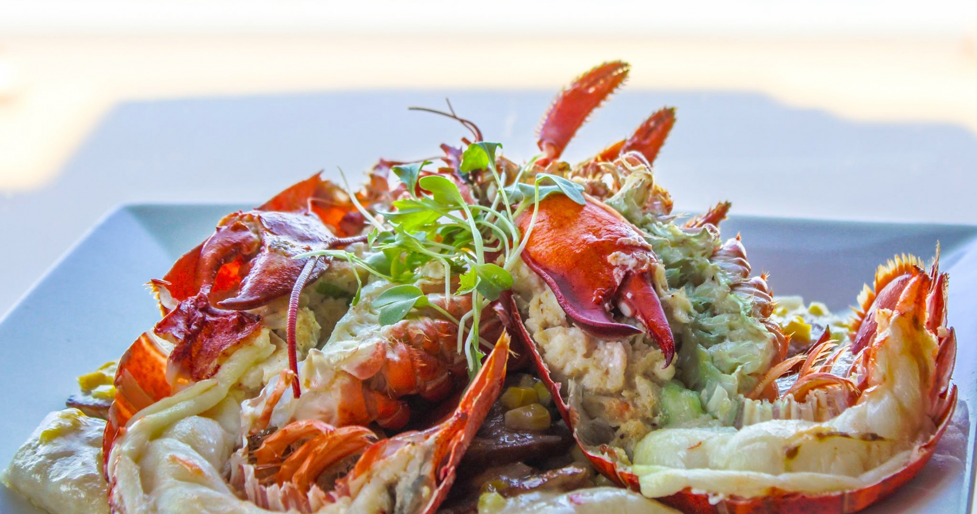 split lobster tails and claws on a plate